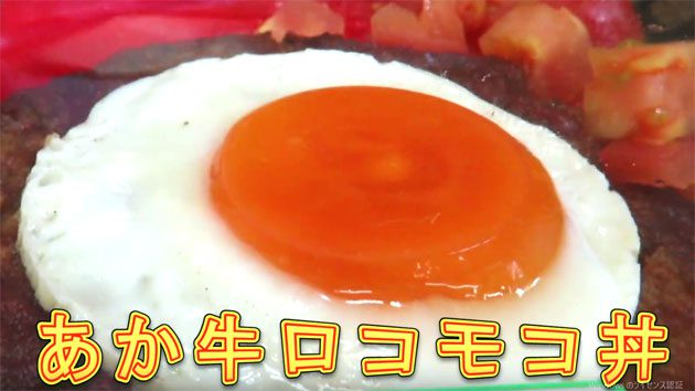 2016年7月9日撮影 阿蘇中央高校生徒プロデュースの「ロコモコ丼」 道の駅阿蘇のお弁当