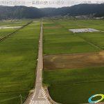 阿蘇 国造神社付近水田 一直線が美しい通りドローン空撮4K写真 20160728 vol.1