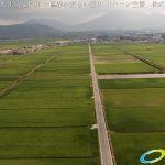 阿蘇 国造神社付近水田 一直線が美しい通りドローン空撮4K写真 20160728 vol.2