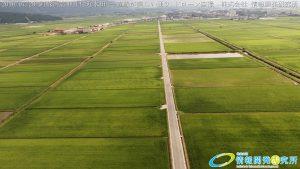 阿蘇 国造神社付近水田 一直線が美しい通りドローン空撮4K写真 20160728 vol.3