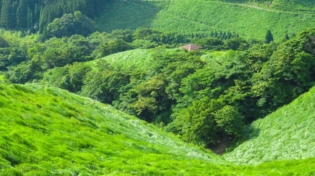 荻岳から放牧地を撮影