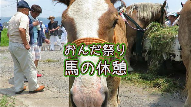 阿蘇神社おんだ祭り(御田植神幸式)