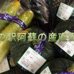 熊本県道の駅阿蘇の産直野菜。