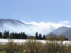 仙酔峡を伝って流れる中岳第一火口の水蒸気