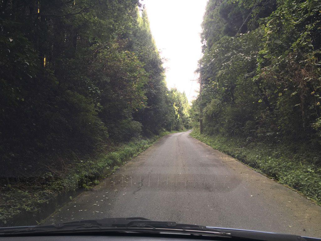 九州自然歩道へ