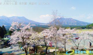 桜 名所 月廻り公園 Vol.1
