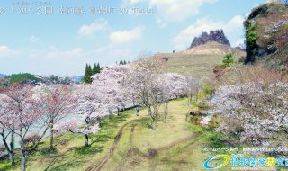 桜 名所 月廻り公園 Vol.2