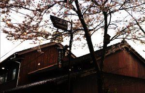 桜の花が舞う門前町