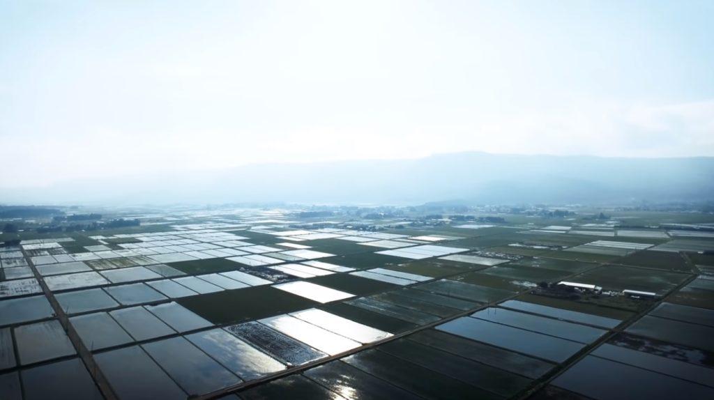 青空を抱いて輝く水田鏡 初夏の阿蘇ドローン映像 4K 本塚 大観峰 外輪山 カルデラの動画を公開
